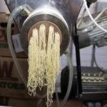 akron pasta